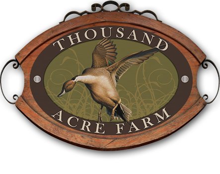 Thousand Acre Farm